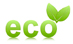 logo_eco_fleur